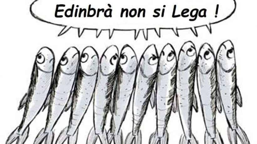 sardine in scozia